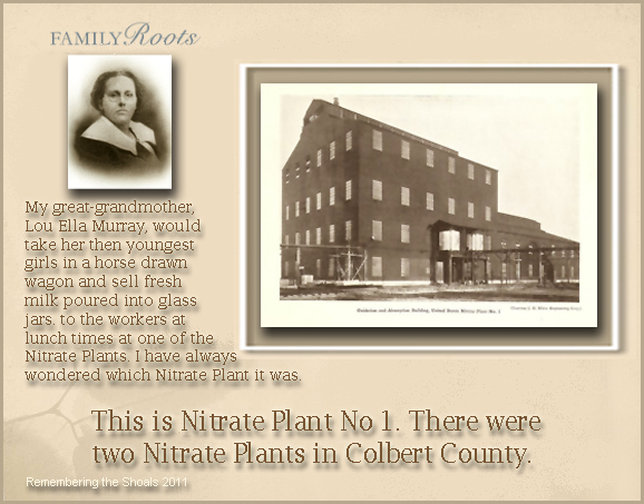 Nitrate Plant No 1