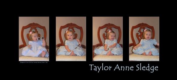 Taylor Anne Sledge