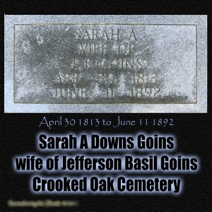 Sarah A Downs Goins