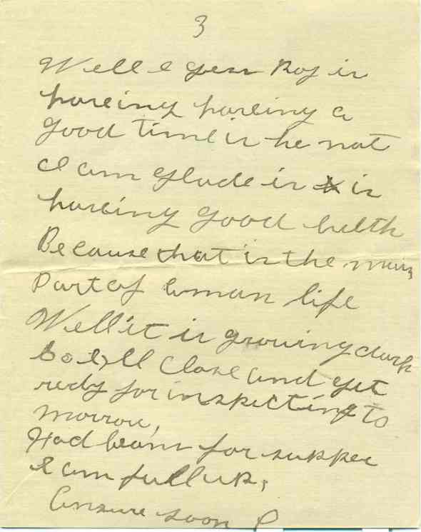 3 August 1917 letter home from Amos Brenneman, page 3
